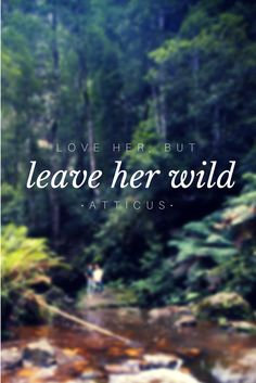 love her, but leave her wild • atticus