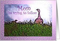 Birthday, Mom and Baby Chick Turkey Card by Greeting Card Universe. $3.00. 5 x 7 inch premium quality folded paper greeting card. Birthday cards for the whole family are available at Greeting Card Universe. We have everything from custom cards to professionally designed cards. Let Greeting Card Universe help you find the best birthday card this year. This paper card includes the following themes: Mother, Baby Chick, and Turkey. Set your birthday cards apart this year...