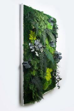 Tableau végétal stabilisé sans entretien Jäkälä : Décorations murales par vihrea