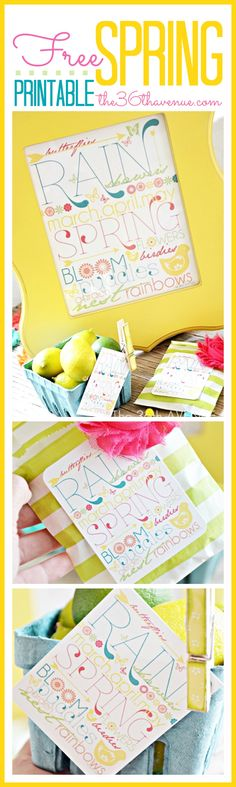 Super fun and free Spring Printables! Perfect for cards, decor and party favors... Enjoy!
