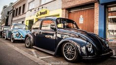 VW Beetle spotted at Freddy Files in Ninove.