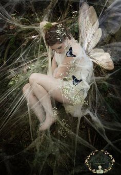 Fantasy | Magical | Fairytale | Surreal | Enchanting | Mystical | Myths | Legends | Stories | Dreams | Adventures | Butterfly Fairy