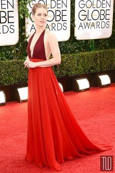 Amy Adams in Valentino at the 2014 Golden Globes.