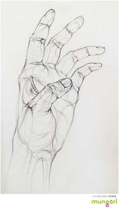 Drawing Tips hand drawing Anatomy Sketches, Anatomy Art, Anatomy Drawing, Pencil Art Drawings, Art Drawings Sketches, Hand Drawings, Hand Pencil Drawing, Contour Drawings, Sketches Of Hands