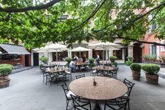 Si estás buscando una opción de comida mexicana, cualquiera de éstas es la ideal: Montecristo, Café de Tacuba y El Cardenal.
