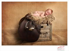 Newborn Photography | horse saddle & crate