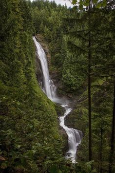 Explore the Pacific Northwest. Hike Wallace Falls and see some of Washington's natural beauty. Wallace Falls State Park is a good day trip idea from Seattle and should be on your Washington State & Seattle Bucket List if you are looking for things to do. Western Washington, Washington State, Seattle Washington, Washington Hiking, Forks Washington, Vacation Ideas, State Parks, Wa State, Great Places