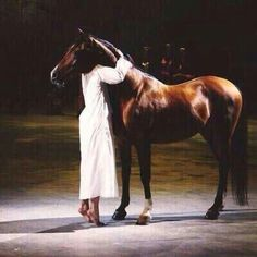 Saudi Arabia, Relax, Horses, Animals, Beauty, Animales, Animaux, Animal, Animais