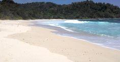 Pantai Sendiki, Pantai yang Sepi dan Masih Alami di Malang | Asli Indonesia