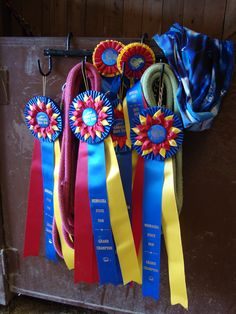 Ribbons from Horse Show
