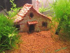 Garnelen Land Haus Höhle Versteck Deko Natur AquaThier | eBay