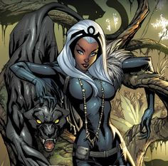 Storm and Black Panther by J. Scott Campbell