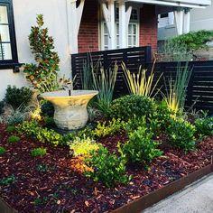 #landscapephotography #atlantispots #garden #magnolia #strelitzia #rusticdecor #contemporarygardendesign #gardenstyle Plants, Plant, Planets