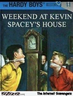 19-the-Hardy-boys-and-Kevin-Spacey-funny-inappropriate-book-cover.jpg (450×593)