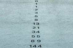 Fibonacci reeks. De 2 voorgaande cijfers bij elkaar optellen. De verhoudingen onderling komen vaak in de natuur voor.