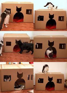 DIY cardboard cathouse | momentstolivefor
