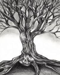 Cool tree drawing