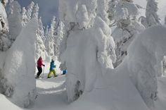 Raquette - Raquette - Sépaq Rando, Beautiful Places To Visit, Quebec, Snow, Sports, Outdoor, Snow Activities, Snowshoe, Pathways