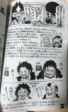 40 year and 60 year old (and older) Luffy