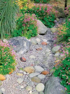 A staple in the Southwest where monsoon rains can come suddenly, dry creek beds can channel water to basins in a garden's low points. Just dig a trench from 2 to 5 feet deep, then line it with stones and sand-colored pebbles.