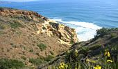 Places to Hike with Kids in SoCal | Torrey Pines State Park