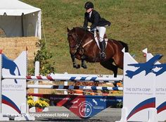 Big or small, you can fix your eq problems with a little the help of this guide and a little determination...