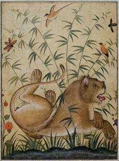 Akbar (1556–1605)  English: Lion at rest, Mughal art.