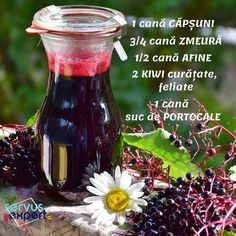 Build up your immune system naturally. Kick flu and colds to the curb. Can be easily adapted for stove top or slow cooker. Kiwi, What Is Water, Vinegar And Honey, Cider Vinegar, Cold Medicine, Flu Remedies, Diarrhea Remedies, Elderberry Syrup, Good Health Tips