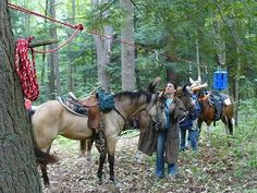 HOME - Camp With Horses