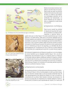 Ciencias 1 con énfasis en Biología. Un viaje a través de la ciencia .: Comisión Nacional de Libros de Texto Gratuitos CONALITEG :.