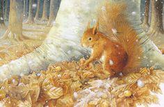 Marjolein Bastin - squirrel
