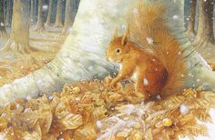 squirrel by Marjolein Bastin