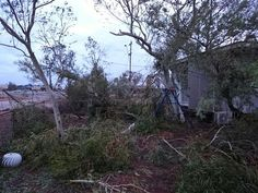 CARNARVON is on Red Alert as severe Tropical Cyclone Olwyn — packing wind gusts over — bears down on the town after smashing Exmouth and Coral Bay overnight with destructive winds. Western Australia, Weather, Weather Crafts