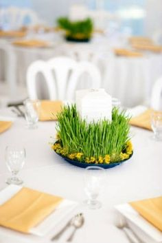 Garden:Inspiring Dining Room Design With Wheatgrass Ideas And White Tbale Cloth With Glass White Chairs To Try Ins Pring Ideas Bring Your Sp...