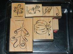 Fall Whimsy Stampin' Up Rubber Stamp Set. $12.00, via Etsy.
