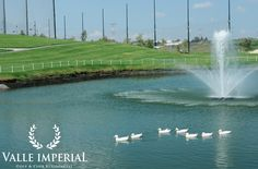 #ValleImperial #Residencial