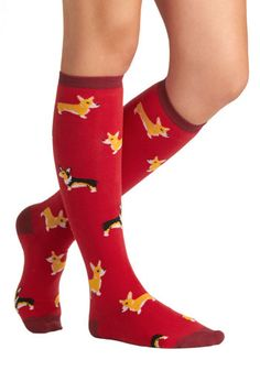 Charmed to the Corgi Socks - Red, Multi, Print with Animals, Casual, Knit, Top Rated, Valentine's