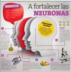 5 consejos para fortalecer tus neuronas y mejorar tu gimnasia cerebral ¡No olvides el Omega 3! - Para más visita: tugimnasiacerebral.com