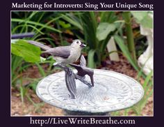 Marketing a Book for Introverted Writers