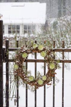 hen + chicks on grapevine wreath