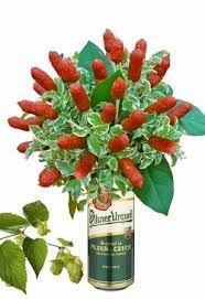 Výsledek obrázku pro květiny pro muže Red, Drink, Google, Beverage, Drinking
