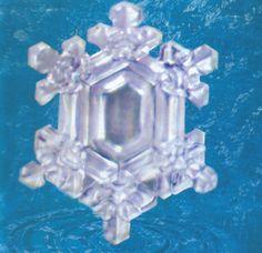 Water crystals - Wisdom