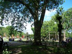 Victoria Park, Hackney