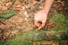 Oktober Inspiration Wald Waldbaden Loslassen Ritual Räucherung Sein