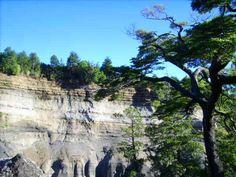 una parte del parque nacional conguillio año 2010