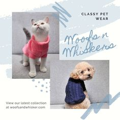 Spoil you pet with Woofs n Whiskers great range of pet wear 🐩🐈🐾 . www.woofsandwhisker.com Spoil Yourself, Your Pet, Teddy Bear, Range, Pets, How To Wear, Animals, Cookers, Animales