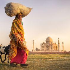 """El Taj Mahal  """"el rey de los palacios"""" es uno de esos lugares que hay que visitar al menos una vez en la vida. Evoca la adoración del emperador Sha Jahan por su amada Mumtaz Mahal. foto de http://ift.tt/1LypSOf #India by lonelyplanet_es"""