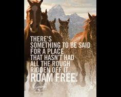 Wyoming Office of Tourism: Horses, Wyoming Office of Tourism, Barnhart Communications, Wyoming, Print, Outdoor, Ads