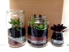 Super easy vivariums (terrariums in a jar). Take any empty jar, fill with colored broken glass layers, top off with soil, and add succulents.