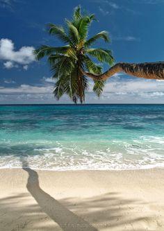 Anse Takamaka - Mahe Island - Seychelles